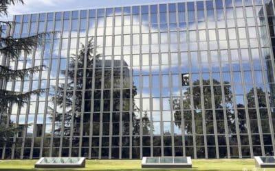 Oiseaux et vitres: attention aux collisions mortelles!